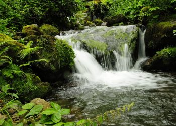 Waterfall in Mtirala National Park